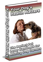 your-dogs-health-matters
