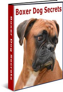 boxer-dog-secrets-ebook