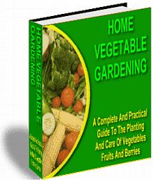 home-vegetable-gardening