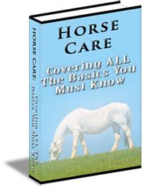 horse-care-guide-ebook